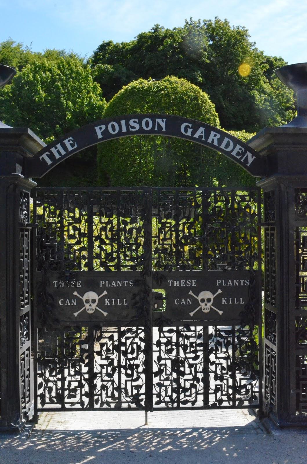 Отровната градина в Аник касъл. Снимка: Дани
